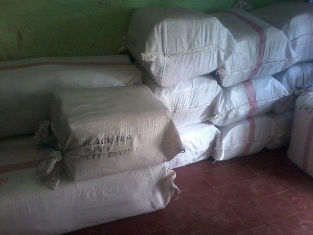 Jual Terpal Kolam Kirim ke Seluruh Indonesia Hub. 08111041161