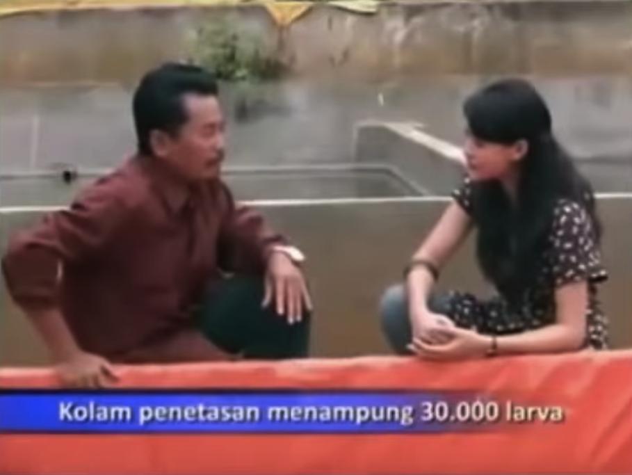 Video Cara Sukses Pembenihan dan Budidaya Ikan Lele Sangkuriang