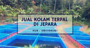 Jual Kolam Terpal di Jepara Hub. 08111041161