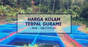 Harga Kolam Terpal Gurame Hub : 08111041161