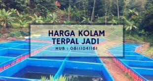 Harga Kolam Terpal Jadi Hub : 08111041161
