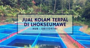 Jual Kolam Terpal di Lhokseumawe Hub : 08111041161