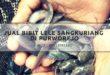 Jual bibit lele sangkuriang di Purworejo