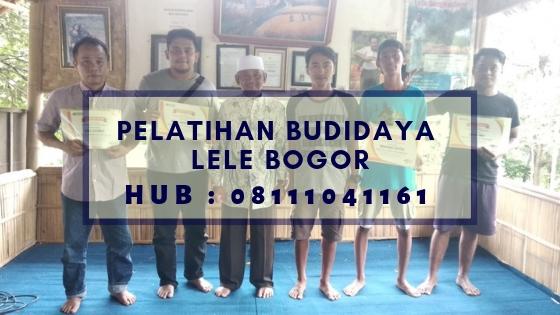 Pelatihan Budidaya Lele di Bogor