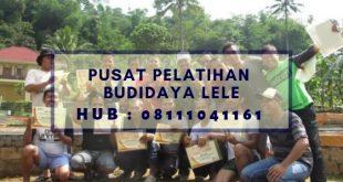 Pusat Pelatihan Budidaya Lele