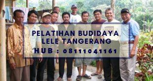 Pelatihan Budidaya Lele Tangerang