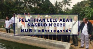 Pelatihan Lele Abah Nasrudin 2020