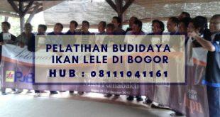 Pelatihan Budidaya Ikan Lele di Bogor