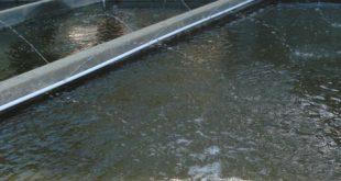 cara mengganti air kolam lele