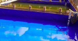 jenis kolam pemijahan lele